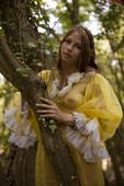 Hilary - Golden bush (x145)