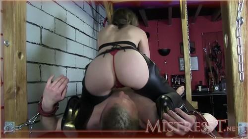MistressT 12 06 24 Denied Cuckold Slave XXX 720p MP4-WEIRD