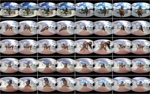 VRporn - NoeMilk - Summer Memories - NoeMilk.mp4 (UltraHD/2K/1920p/4.05 GB)