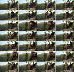 Bonnie Alex-Public Nature Creampie - Amateur Couple BonnieAlex [HD 720p] Pornh.com [2021/79.1 MB]