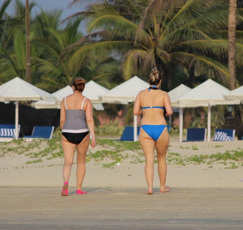 2 asses on the beach