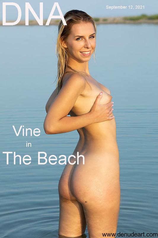 Vine The Beach (2021-09-12)