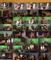 Die Welt der Lust: Erotische Phantasien (Volume 4 / 2011)