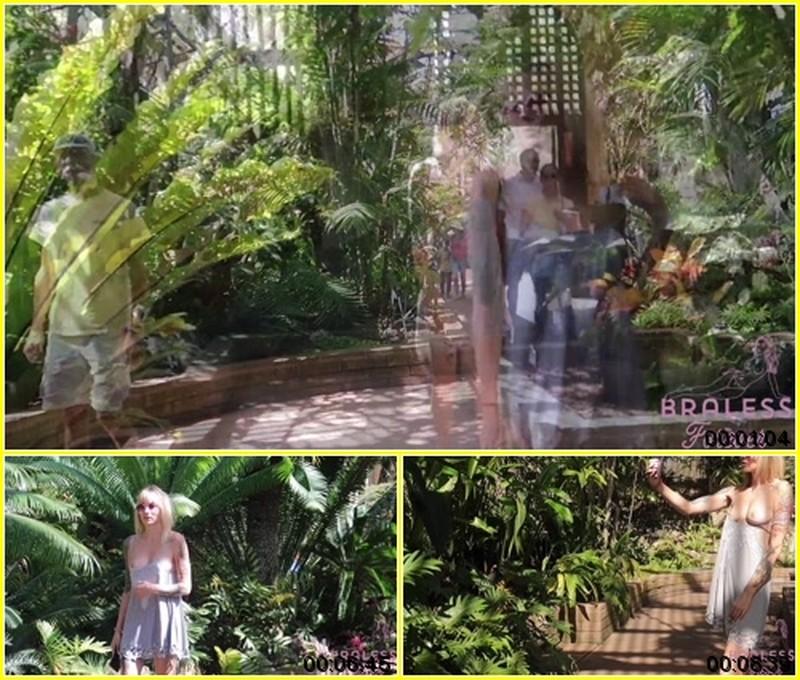 Alex - In the Gardens